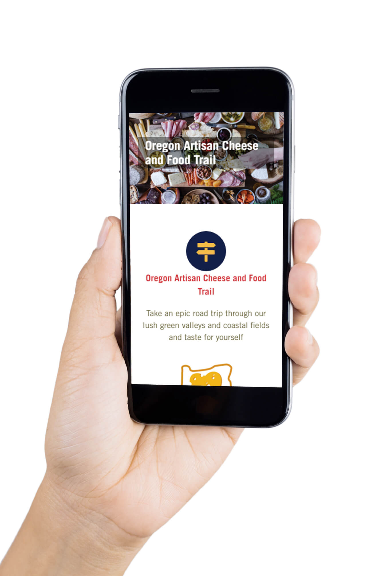 Hand holding a smartphone, displaying how the Oregon Cheese Guild website displays on mobile